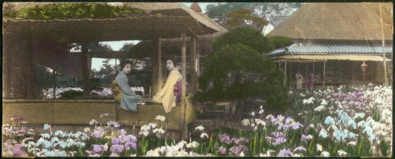 Две молодые женщины в павильоне в саду