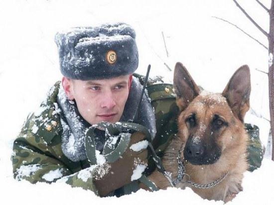 Открытки. 28 мая. С днем пограничника! Охрана границы в снегу открытки фото рисунки картинки поздравления