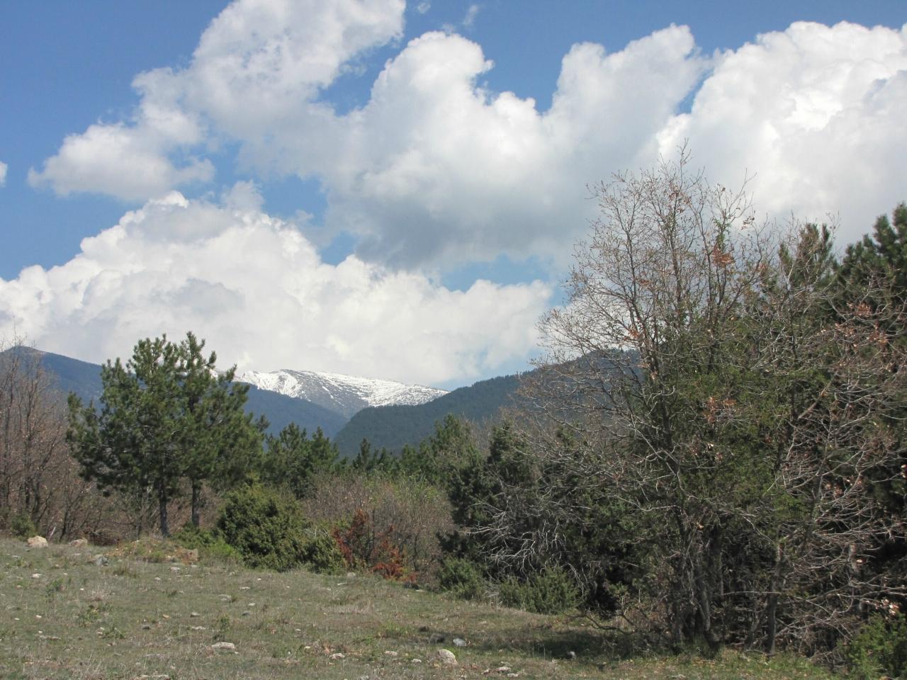 На ближнем перевале