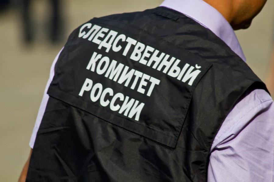 Вцентральной части Москвы полицейские задержали 10-летнего ребенка, декламировавшего «Гамлета»