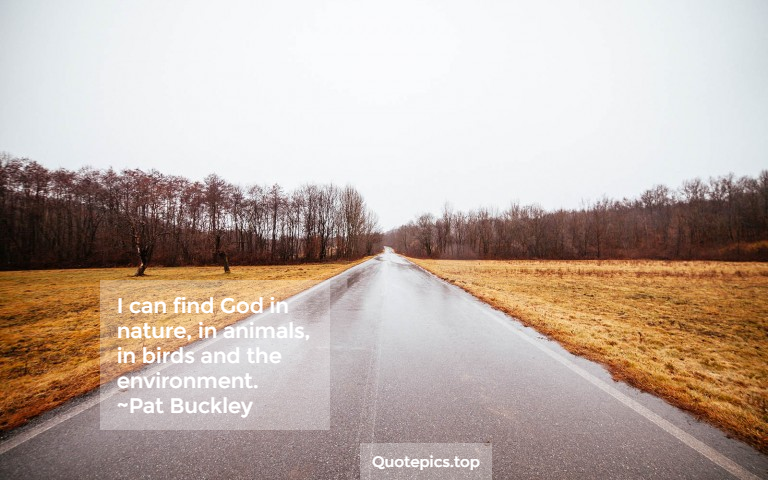 I can find God in nature, in animals, in birds and the environment. ~Pat Buckley