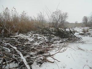Берег камыша и сухих веток ... В походе декабрьском, снежно-туманном,