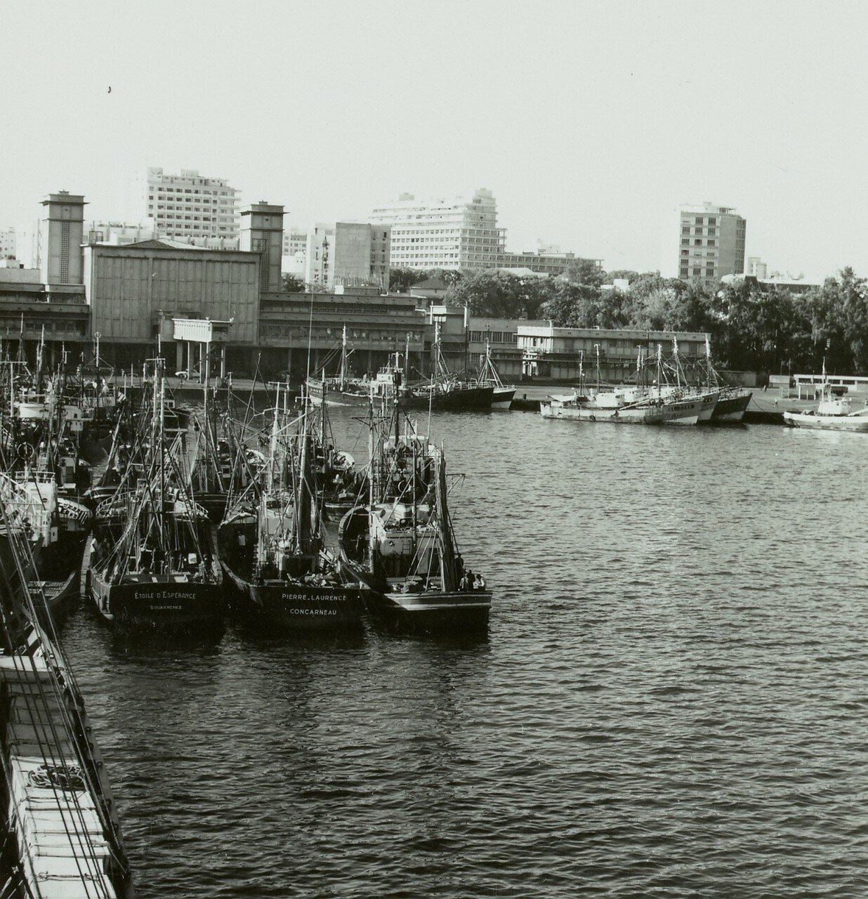 Сенегал. Дакар. Вид городского порта