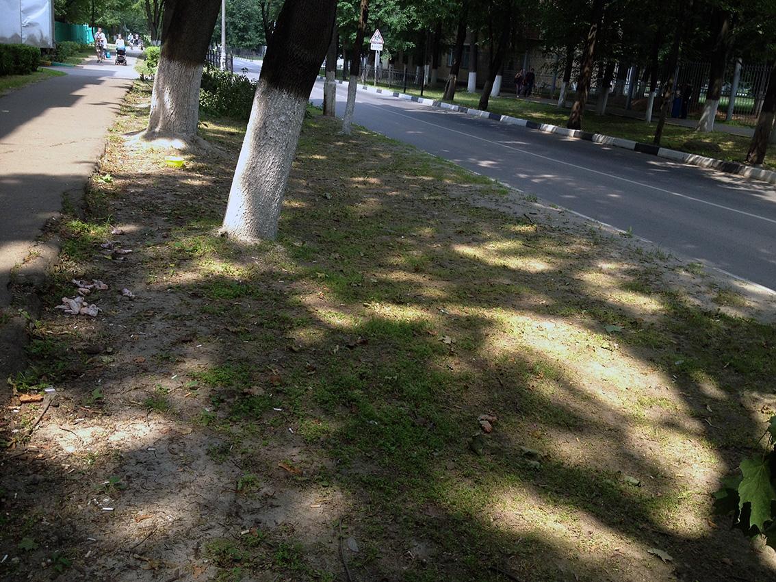 уничтожен почвенный слой рост травы прекратился.jpg