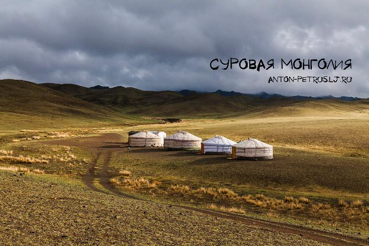Суровая Монголия (14 фото)