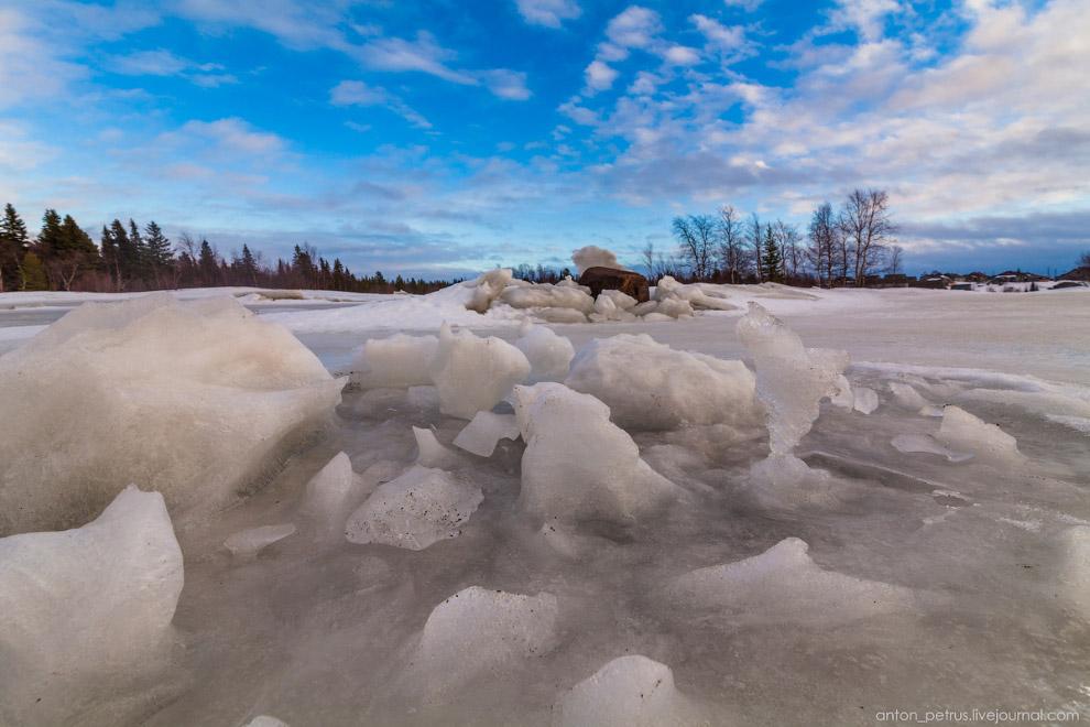 3. Дневной дождь, как оказалось, только помог— на льду появились лужи, в которых от