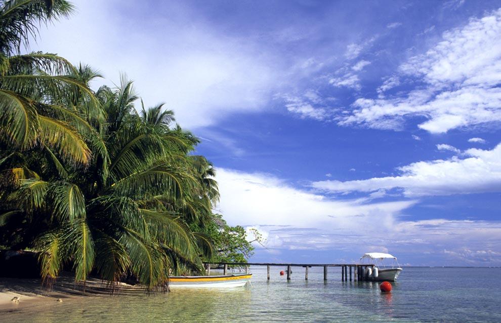 11. Тропический климат и близость двух океанов создают в Панаме удивительное природное богатство и р