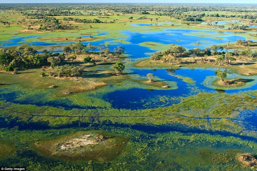 5. Сафари-туры от Wilderness Safaris в Ботсване. Туроператору Wilderness Safaris принадлежат 19 живо