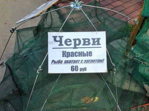 8_Луга_рынок.JPG
