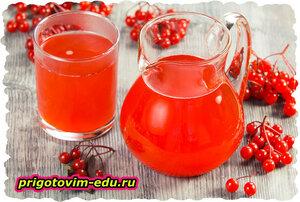 Освежающий напиток из брусники и граната