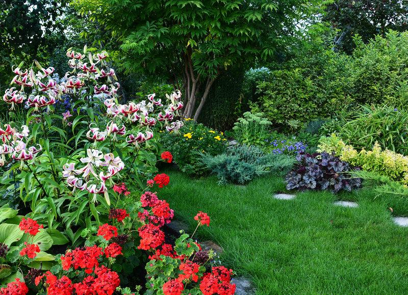 Яркое цветение, свежесть ароматов