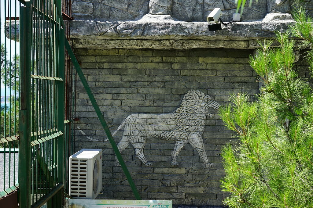 Барельеф со львом на стене в Сафари-парк, Геленджик.