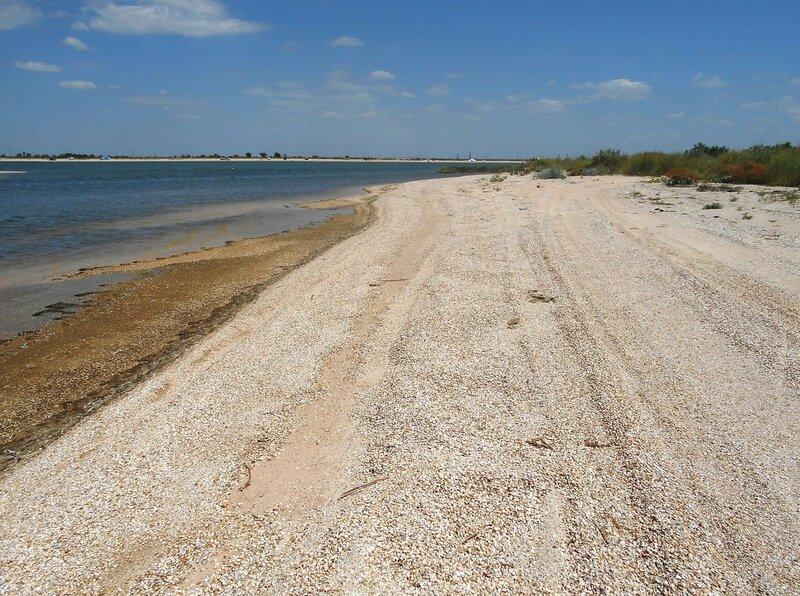 Пески, знойный день ... DSCN6783.JPG