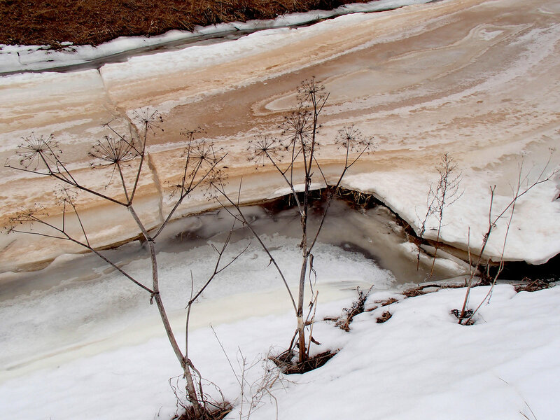 тающий лед у реки суйда в марте
