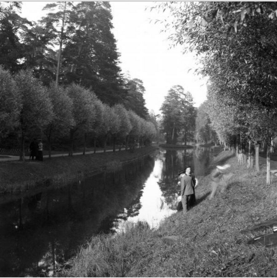 1904. Вид Путяевского пруда