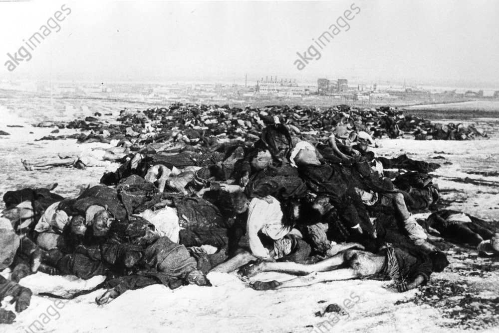 Leichen dt.Soldaten v.Stalingrad/1943 - Bodies of German soldiers / Stalingrad - Cadavres de soldats allemands devant Stalingrad/1943