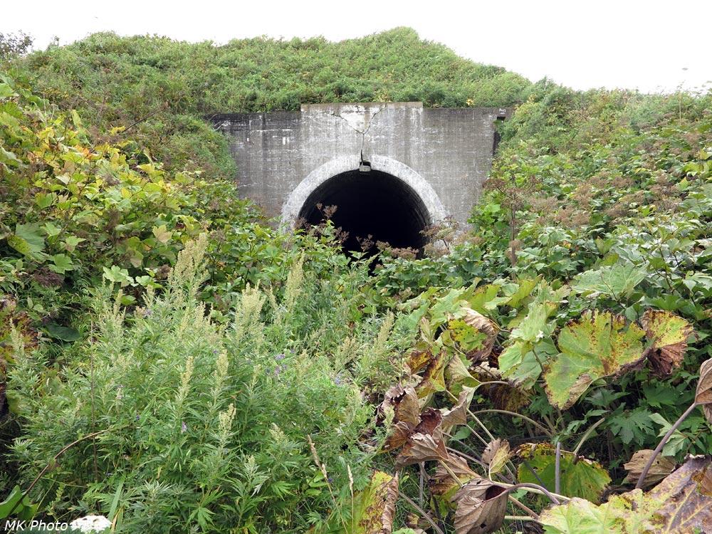 Северный портал тоннеля 20