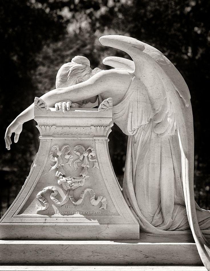 ангел стальено генуя
