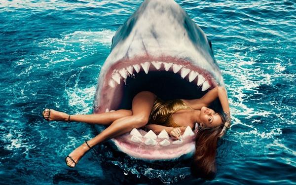 Добро пожаловать на Shark Promotion!