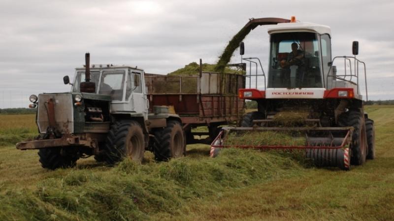 Совбез: Россия не допустила дефицита продовольствия, несмотря насанкции