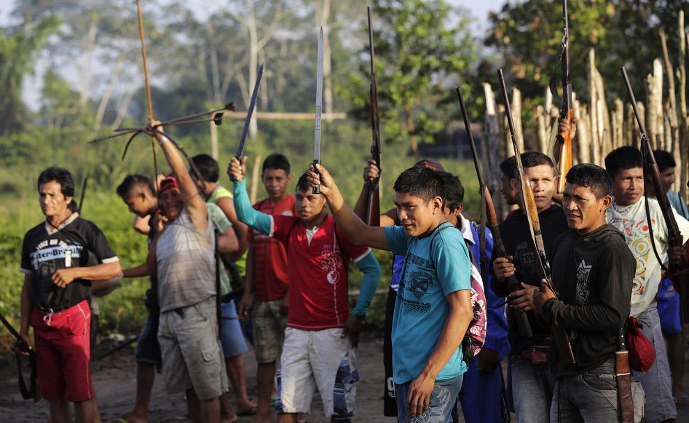 3. Держи! Одно из оружий борьбы с черными лесорубами — лук и стрелы. (Фото Reuters | Lunae Parr