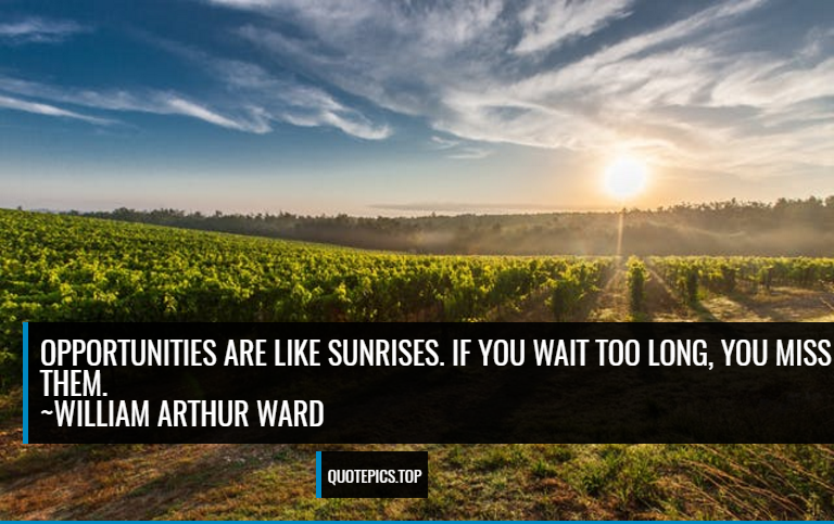Opportunities are like sunrises. If you wait too long, you miss them. ~William Arthur Ward