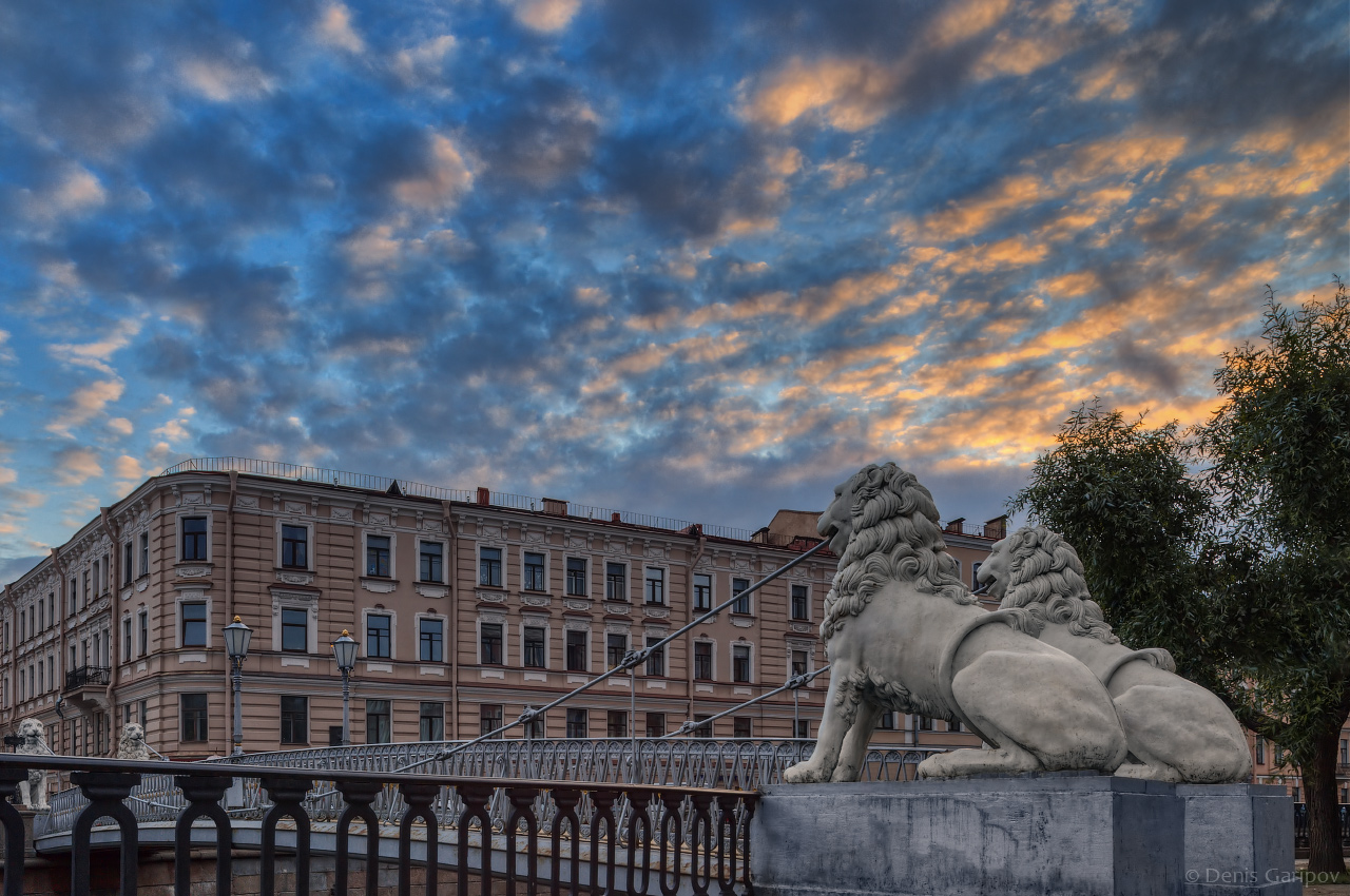 2016-07, bridge of four lions, city, dawn, griboedov canal, lion, morning, nobody, russia, saint-petersburg, sculpture, summer, ��������, �����, ����� ����������, ���, ����, ������� ����, �������, ������, �����-���������, ����������, ����