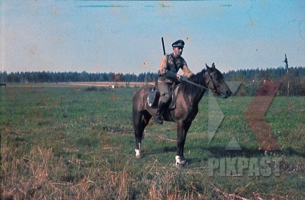 stock-photo-german-luftwaffe-flak-officer-shotgun-gun-rifle-hunter-hunting-horse-cavalry-summer-tunic-russia-1941-3-flak-abt-701--8040.jpg