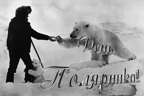 21 мая День Полярника.Полярник с белыми медведями