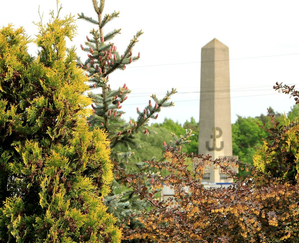 Вольбруж. Памятник борцам за независимость Польши