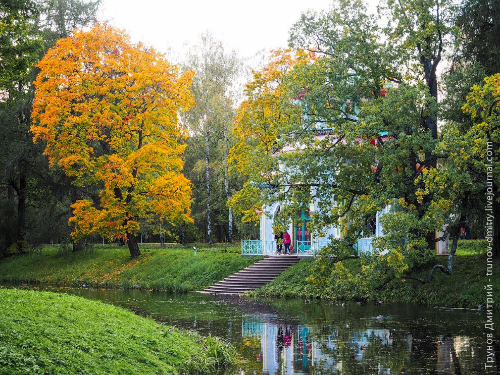 13. Осень в Пушкине.