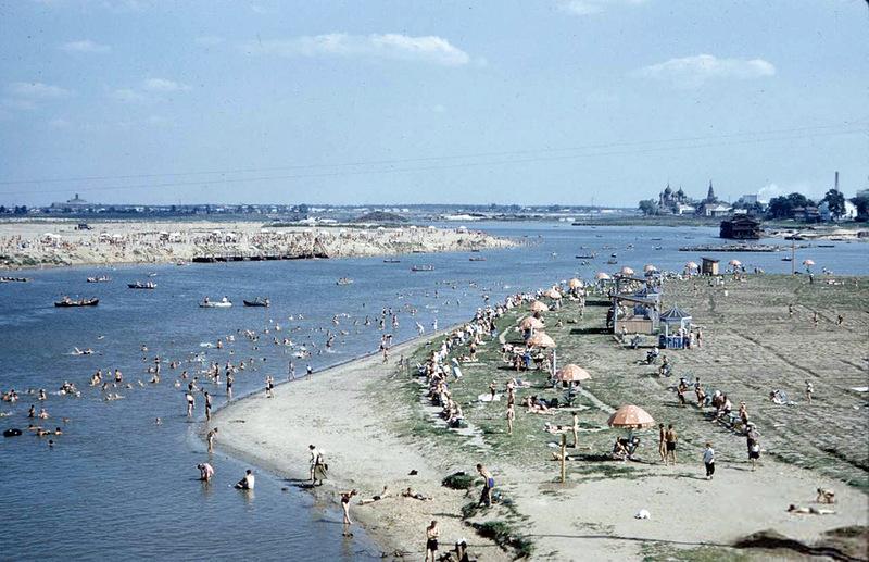 Крупнее Покос в пойме реки Которосль, 1959: