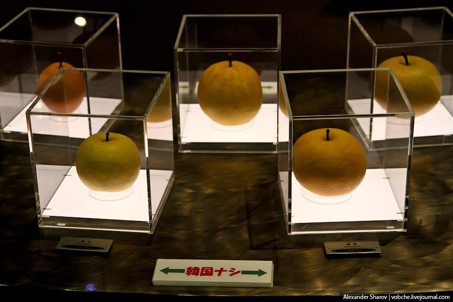Груши XX век были выведены в префектуре Тоттори около 100 лет назад и произрастают только на этой те