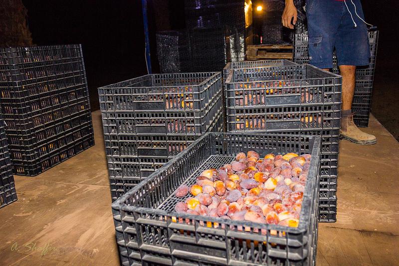 41. Сюда складываем готовую продукцию и забираем пустые ящики для продолжения работы.