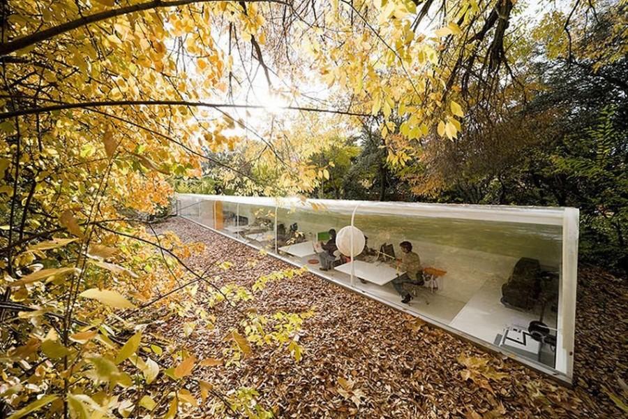 10. Испанское архитектурное бюро Selgas Cano решило расположить свой офис прямо посреди леса, чтобы
