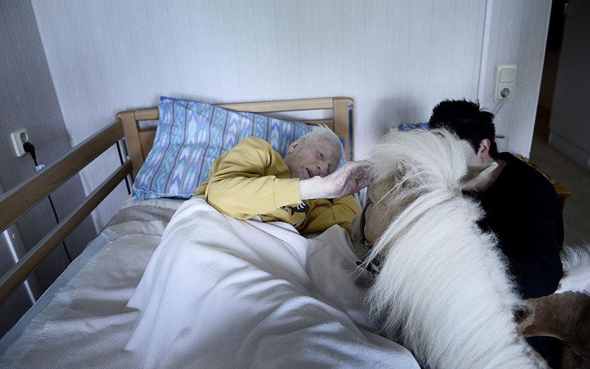 11. Пообщавшись около часа с постояльцами дома престарелых, пони спускаются вниз на лифте.