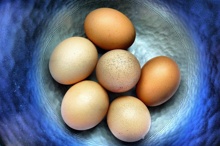 16. Куры во всем мире снесут за день 190 миллионов яиц.