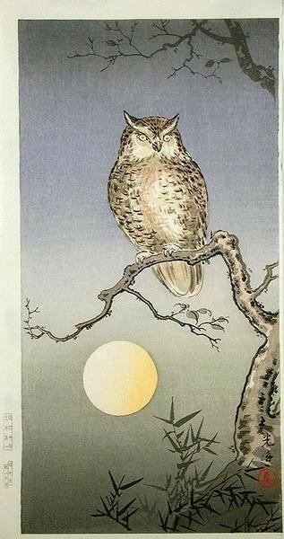 Tsuchiya_Koitsu-No_Series-Owl-00031333-020909-F06.jpg