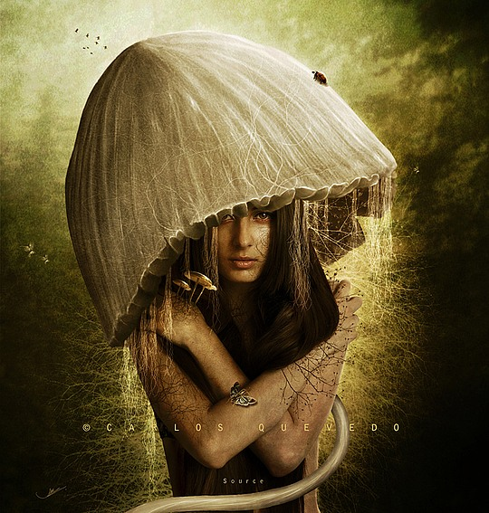 Photo Manipulations by Carlos E. Quevedo
