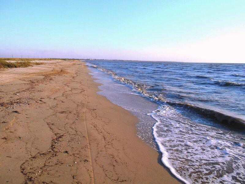У моря ... DSCN8084.JPG