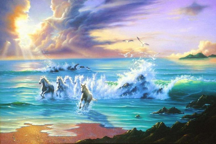 фото море джим уоррен есть бассейн аква