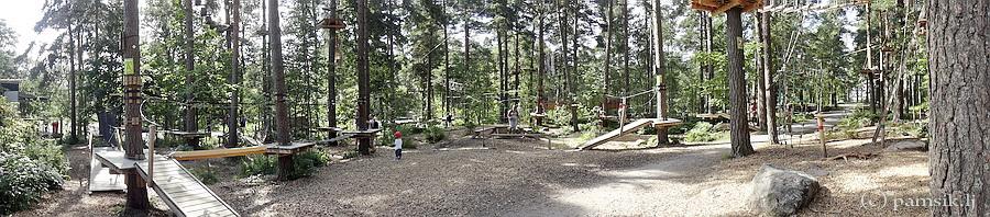 900-45.jpg
