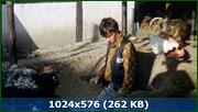 http//img-fotki.yandex.ru/get/114758/170664692.159/0_187a8a_910a64e0_orig.png