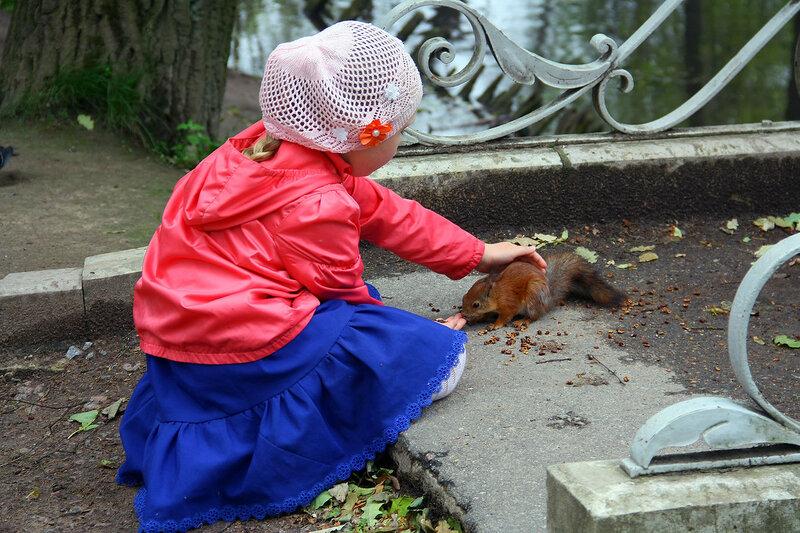 девочка кормит белку в Гатчинском парке