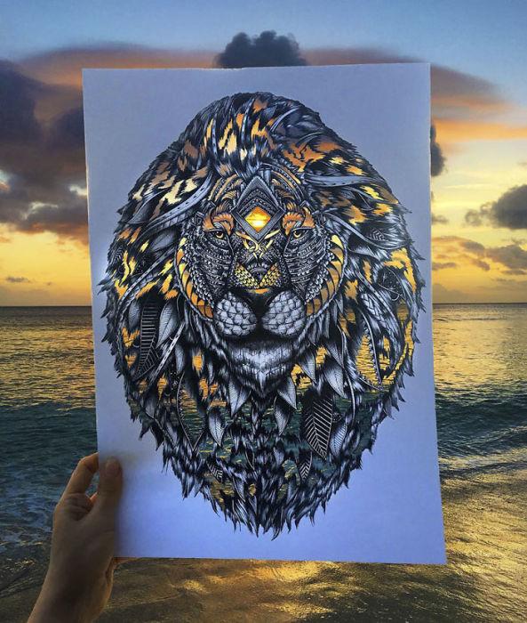 Линии и тени: 20 завораживающе детализированных рисунков животных (20 фото)