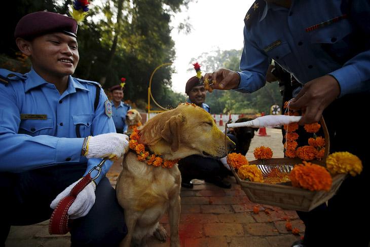 Полицейские в Катманду (16 фото)