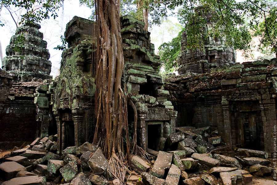 Всего в нескольких километрах от современного международного аэропорта на северо-западе Камбоджи рас
