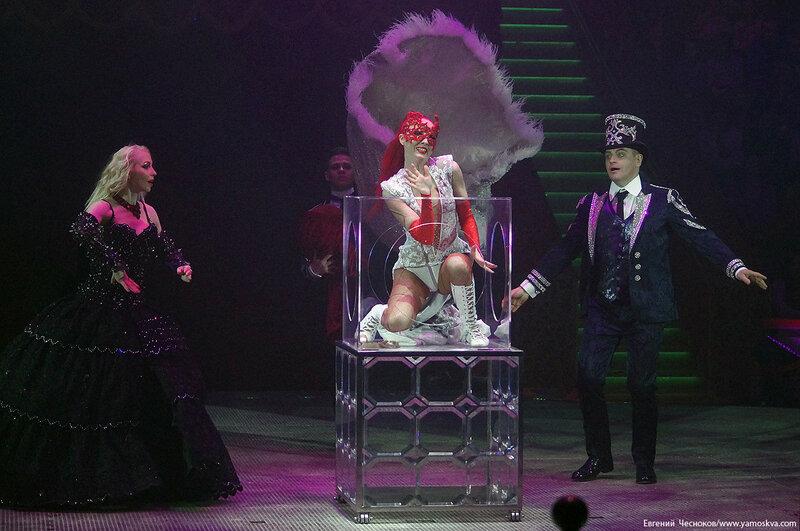 Цирк Никулина. Магия цирка. 21.02.17.62. Сокол..jpg