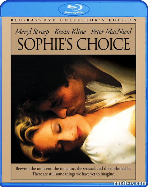 Выбор Софи / Sophie's Choice (1982/BDRip/HDRip)