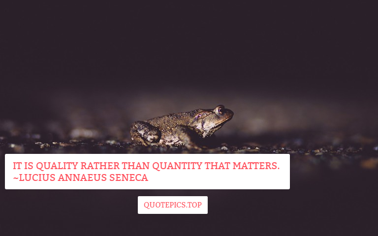 It is quality rather than quantity that matters. ~Lucius Annaeus Seneca